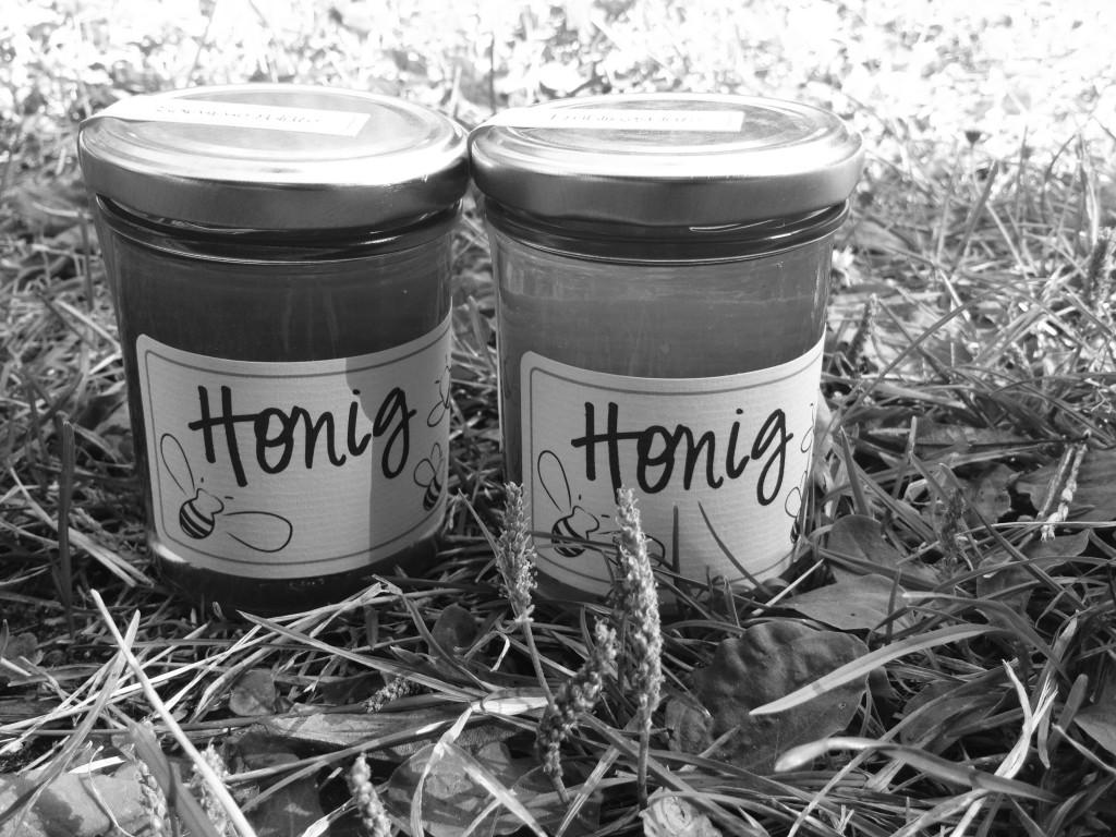 Honig in der Wiese