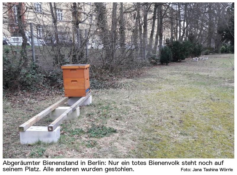 Gestohlene Bienen
