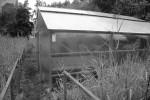 Bislang noch im Hinterhof statt auf dem Dach: Das Gewächshaus der Roof Water-Farm, in der die Aquaponikanlage steht.