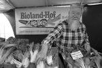 Karl Georg Zielke auf dem Wochenmarkt in Schöneberg.